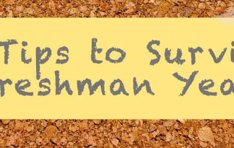 Five tips to surviving freshman year