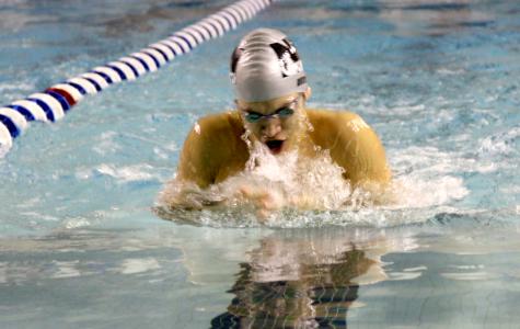 Viking swim team take last year's accomplishments to next level