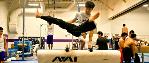 Girls gymnastics team earns success