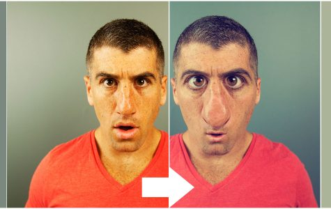 Photoshop:  Creating a swag facial deformation