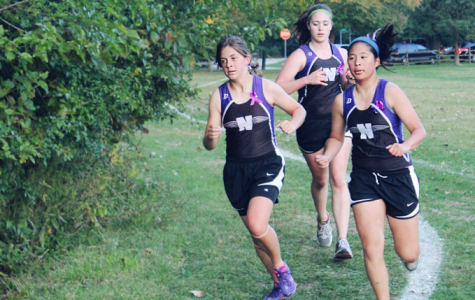 Girls cross country dominate their major invitationals