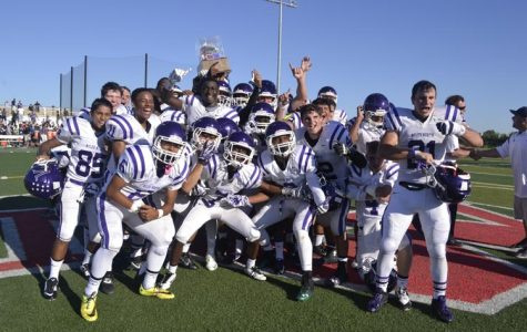 Vikings look to defend their turf for homecoming