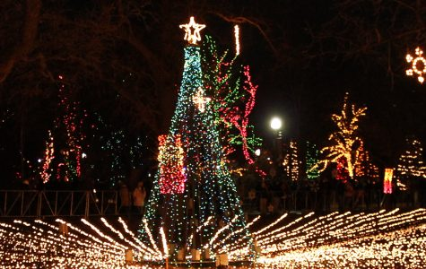 Holiday happenings: What to do this winter