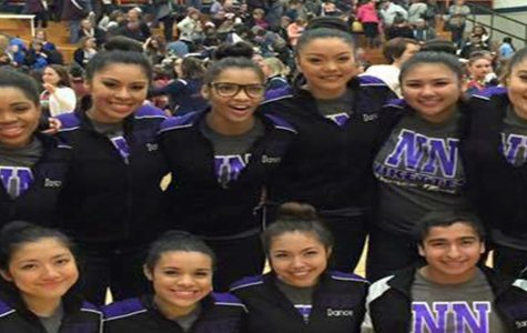 Vikettes dance their hearts out in IHSA sectionals