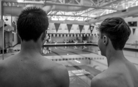 NN boys swimming making a splash, dives headfirst into season