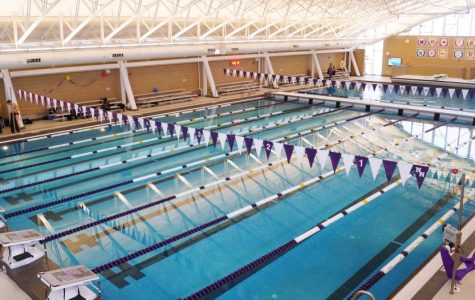 Niles North dives into sectionals