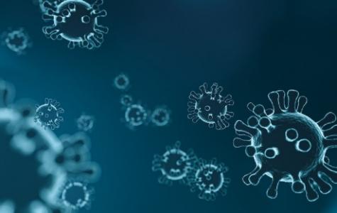 Coronavirus increasing rapidly worldwide, breeding racism