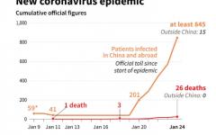 New cases of Coronavirus worldwide