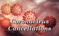 Coronavirus spreads, D219 takes precautions