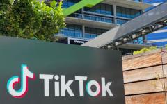 TikTok Trouble: Social media giant reels from international scrutiny